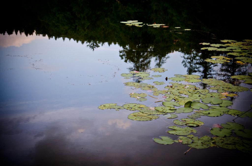 Lago di Cei TN 2012