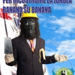 magilla4president_MURATORE